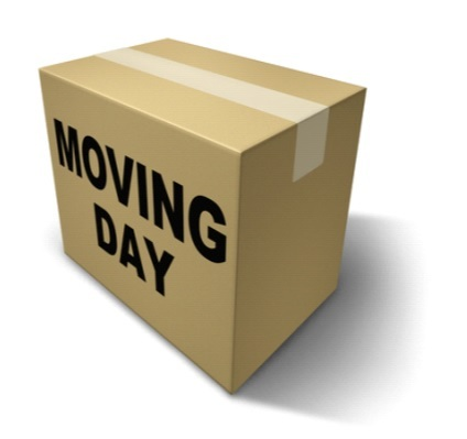 move office.jpg